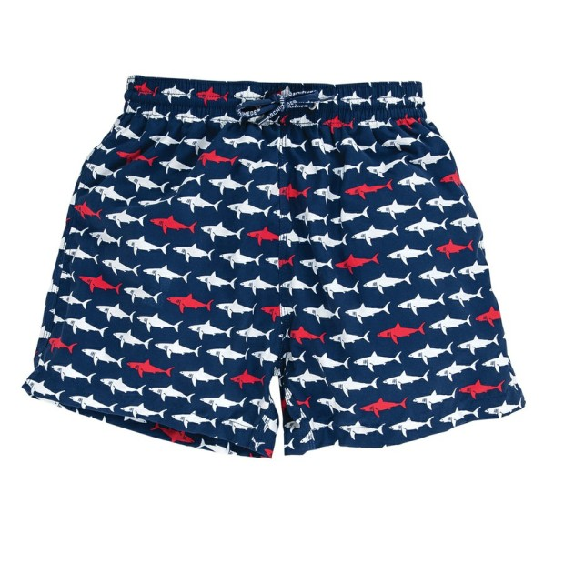 Sharky Daddy Boxer
