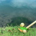 Push and pull wooden duck